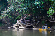 Elephant Hills Luxury Tented Camp in the rainforest in Southern Thailand.  The canoe trip down the Sok River from the Elephant Hills Camp.