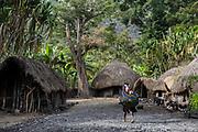 Dani tribe dwelling<br /> Jiwika village<br /> Suroba<br /> Trikora Mountains<br /> West Papua<br /> Indonesia