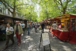 Farmer's market at weekend on Kollwitzplatz in Prenzlauer Berg in Berlin Germany