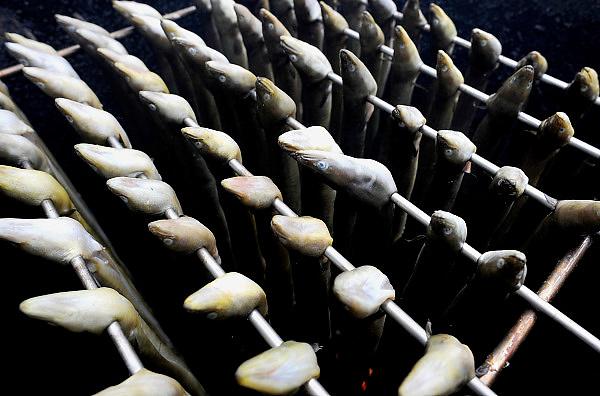 Nederland, Batenburg, 25-7-2010Paling hangt te roken in een ton.Foto: Flip Franssen/Hollandse Hoogte