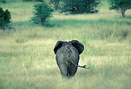 1998 - SOUTHERN AFRICA