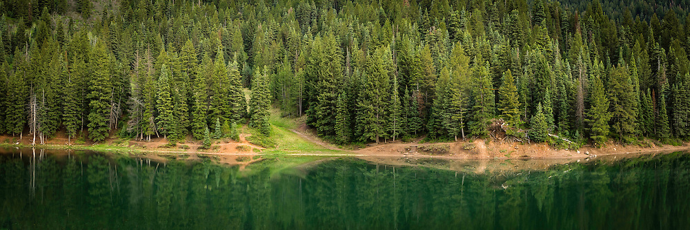 A panoramic view of the lakeside pine trees and their reflections in Tibble Fork Reservoir in American Fork Canyon.
