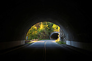 Tunnel in Olympic National Park, Washington.