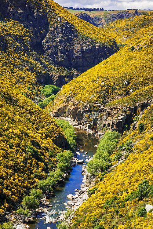 Dunedin Railways tour of the Taieri Gorge, Otago, South Island, New Zealand