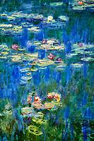 France, Paris (75), zone classée Patrimoine Mondial de l'UNESCO, les Tuileries, le musée de l'Orangerie, la série Nymphéas de nénuphars peints par Claude Monet // France, Paris, les Tuileries, museum of Orangerie, Nymphéas by Claude Monet