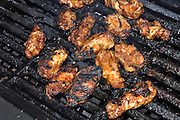chicken cooking on the barbecue;