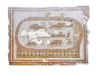 Late 2nd early 3rd century AD Roman mosaic depictiong a  chariot race at the circus. From Cathage, Tunisia.  The Bardo Museum, Tunis, Tunisia. White Background. .<br /> <br /> If you prefer to buy from our ALAMY PHOTO LIBRARY  Collection visit : https://www.alamy.com/portfolio/paul-williams-funkystock/roman-mosaic.html - Type -   Bardo    - into the LOWER SEARCH WITHIN GALLERY box. Refine search by adding background colour, place, museum etc<br /> <br /> Visit our ROMAN MOSAIC PHOTO COLLECTIONS for more photos to download  as wall art prints https://funkystock.photoshelter.com/gallery-collection/Roman-Mosaics-Art-Pictures-Images/C0000LcfNel7FpLI