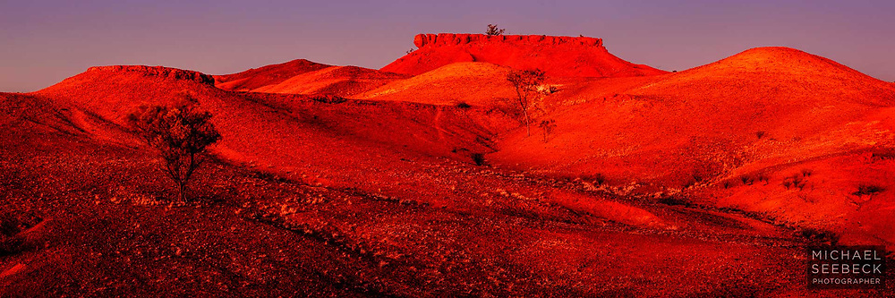 This panoramic image was captured in the early dawn, with the warm glow of sunrise reflected in the bare red earth the mesa landscape of western Queensland.<br /> <br /> Code: HAQN0001