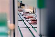 Nederland, Nijmegen, 8-1-2010In een bacteriologisch laboratorium worden petrischaaltjes met een kweek waarin bacteriën groeien in een gesloten systeem automatisch gefotografeerd en geanalyseerd met een hoogwaardige machine.Foto: Flip Franssen