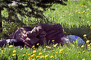 Perm, Russia, 01/06/2006..A homeless woman sleeping in the shade from the midday sun on Lenin Street.