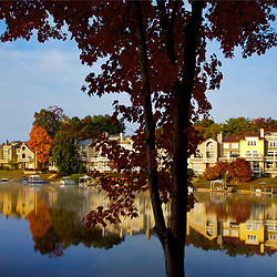 Reston's Lake Audobon  Around Reston