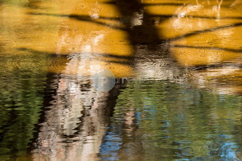 Río de la Hoz seca. Orea. Parque Natural del Alto Tajo. Guadalajara. ©Antonio Real Hurtado / PILAR REVILLA