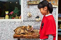 Taïwan, district de New Taipei, Houtong village, Village des chats // Taiwan, New Taipei county, Houtong Cat Village