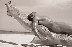 naked man on a tree branch on the beach