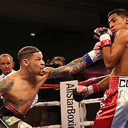"""Orlando """"El Fenomeno""""  Cruz (L) punches Gabino """"Flash"""" Cota during their Boxeo Telemundo WBO/NABO Super Featherweight bout on Friday, October 9, 2015 at the Kissimmee Civic Center in Kissimmee, Florida. Cruz, who is from Puerto Rico, is the first ever openly gay boxer  in the history of the sport and won the bout by unanimous decision.  (Alex Menendez via AP)"""