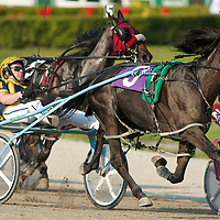 Standardbred Racing Flamboro Downs - Confederation Cup Day