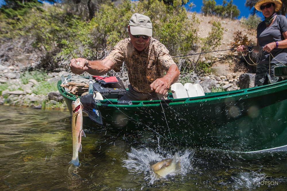 Not uncommon is to have a double up while fishing the Middle Fork. Cutthroat at times will readily take flies and seem to be particularly attracted to one trailing behind a team mate.