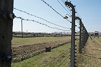 09 APR 2012, KRAKOW/POLAND:<br /> Blick durch Stacheldrahtzaun innerhalb des Lagers auf Fundamente von Holz-Baraken und Steinbaraken, Staatliches polnisches Museum / Gedenkstaette des ehem. Konzentrationslager Ausschitz-Birkenau<br /> IMAGE: 20120409-01-007<br /> KEYWORDS: Krakau, KZ, Vernichtungslager Auschwitz II–Birkenau, Polen