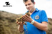 Explotació agrària de vaques a l'alt empordà. Encàrrec per la marca comercial Danone. Fotografia editorial per el grupo Zeta.
