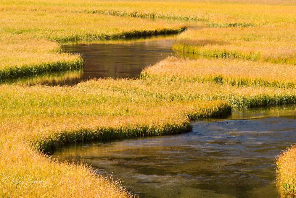Kings Creek meandering through Upper Meadow, Lassen Volcanic National Park, California
