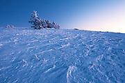Winter on Round Bald