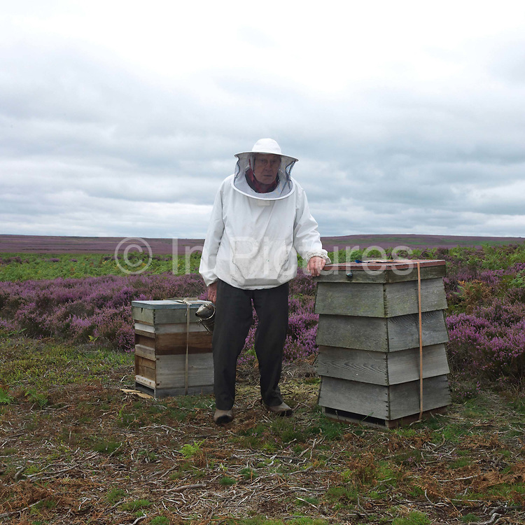 Portrait of a beekeeper with his beehives in amongst the purple heather on the North York Moors, North Yorkshire, UK