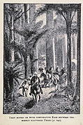 They Moved on with Comparative Ease between the Widely Scattered Trees  from the book ' Mistress Branican ' by Jules Verne, illustrated by Leon Benett. The story begins in the United States, where the heroine, Mistress Branican, suffers a mental breakdown after the death by drowning of her young son. On recovering, she learns that her husband, Captain Branican, has been reported lost at sea. Having acquired a fortune, she is able to launch an expedition to search for her husband, who she is convinced is still alive. She leads the expedition herself and trail leads her into the Australian hinterland. Mistress Branican (French: Mistress Branican, 1891) is an adventure novel written by Jules Verne and based on Colonel Peter Egerton Warburton and Ernest Giles accounts of their journeys across the Western Australian deserts, and inspired by the search launched by Lady Franklin when her husband Sir John Franklin was reported lost in the Northwest Passage. Translated by A. Estoclet, Published in New York, Cassell Pub. Co. 1891.