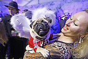 Dec. 26, 2015 - Kiev, ukraine - <br /> <br /> Christmas Pug Party In Kiev<br /> <br /> A pug dressed in a costume at the ''The Christmas pug-party'' parade,during which the jury chose the most elegant Christmas pug, in Kiev,Ukraine<br /> ©Exclusivepix Media