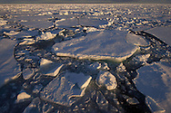 Drifting pack ide, sea ice, Svalbard, Norway, Arctic
