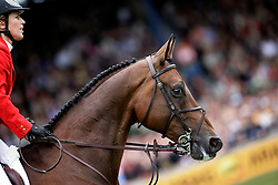 Michaels-Beerbaum Meredith (GER) - Shutterfly<br /> World Equestrian Games Aachen 2006<br /> Photo © Hippo Foto
