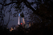 The Shard on the distant Southbank and skyscrapers in the City of London's financial district are seen through autumn branches in Ruskin Park, on 4th November 2020, in London, England,