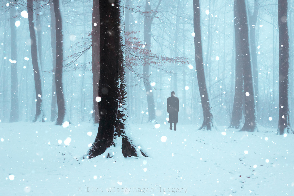 Wanderer in a forest on a Winter day