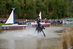 Attinger Patrizia, SUI, Hilton P<br /> World Equestrian Games - Tryon 2018<br /> © Hippo Foto - Dirk Caremans<br /> 15/09/2018