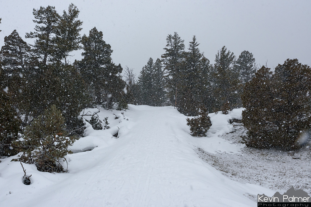 By the time I finished hiking the Upper Terrace loop trail the snow was coming down heavily.