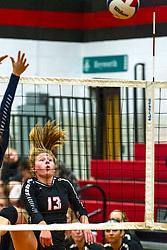 01 October 2019:    Ridgeview Mustangs at Heyworth Hornets Girls Volleyball at Heyworth Illinois