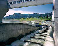 Fish ladders on the Bonneville Dam, Columbia River Gorge Oregon USA