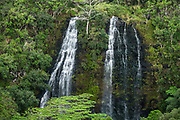 See Opaekaa Falls from a roadside viewpoint in Wailua River State Park on the island of Kauai, Hawaii, USA. In this waterfall, Opaekaa Stream plunges 151 feet over basalt formed from volcanic eruptions millions of years ago, on land now managed by Hawaii Department of Land and Natural Resources (HDLNR). From Kuhio Highway (Route 56) in Wailua, drive 2 miles up Kuamoo Road (Route 580) to the Opaekaa Falls  parking lot on the right.