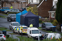 ©Licensed to London News Pictures 22/12/2019. <br /> Crawley Down ,UK. Police forensic tents on the scene. Two people are dead and a third is fighting for life after a knifeman attacked people on a housing estate in Crawley Down, West Sussex Photo credit: Grant Falvey/LNP