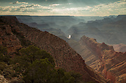 Late afternoon light strikes the Grand Canyon, revealing the seemingly endless depth of this majestic formation.