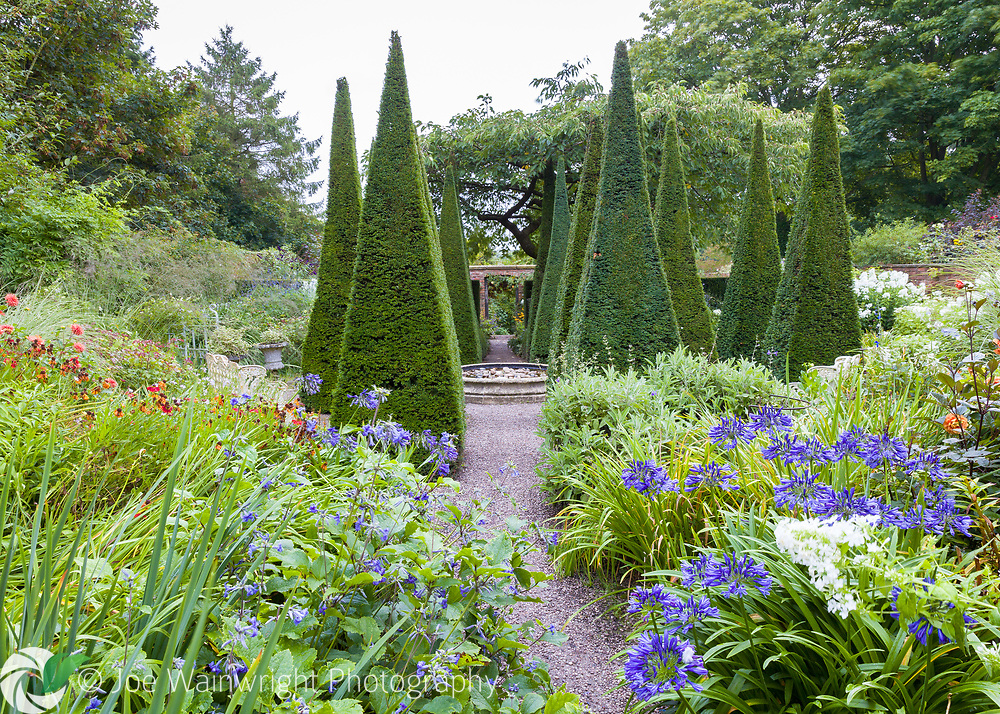 The Lanhydrock Garden, noted for its hot colours, at Wollerton Old Hall Garden, near Market Drayton, Shropshire, photographed in August. The garden has been designed and developed by Lesley and John Jenkins.  Work began in 1984 in the grounds of a 16th century house.  Visitors to Wollerton Old Hall are immediately struck by the attractive layout – one which entices you explore and discover one hidden gem of garden design after another.  The planting is also lush, sumptuous, colourful and fragrant.  Nothing is out of scale; no structure or garden section dominates or overwhelms the others – and the transition from one garden 'room' to another is totally seamless and natural.<br /> <br /> This image is available to buy from the GAP Gardens website at: https://www.gapphotos.com/