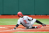 21 February 2015: Hartford's Chris DelDebbio slides into home plate, scoring the game's first run. The Iona College Gaels played the University of Hartford Hawks in an NCAA Division I Men's baseball game at Jack Coombs Field in Durham, North Carolina as part of the Duke Baseball Classic. Hartford won the game 12-1.