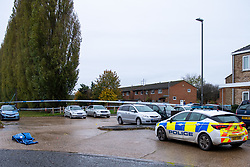 © Licensed to London News Pictures. 29/10/2020. Aylesbury, UK. A police vehicle parked next to a cordoned area on Lavric Road, Aylesbury. Thames Valley Police have launched a murder investigation following an incident in Aylesbury. At approximately 21:30GMT on Wednesday 28/10/2020 police officers were called to Lembrook Walk, Aylesbury not far from the Edinburgh Playing Fields following reports that two men had been assaulted. A man in his twenties was taken to hospital with serious injuries where he later died. Photo credit: Peter Manning/LNP