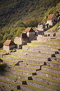 Rice terraces and reconstructed housing, Machu Picchu, Cusco Region, Urubamba Province, Machupicchu District in Peru, South America