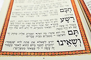Traditional passover dinner, close up of the Haggadah