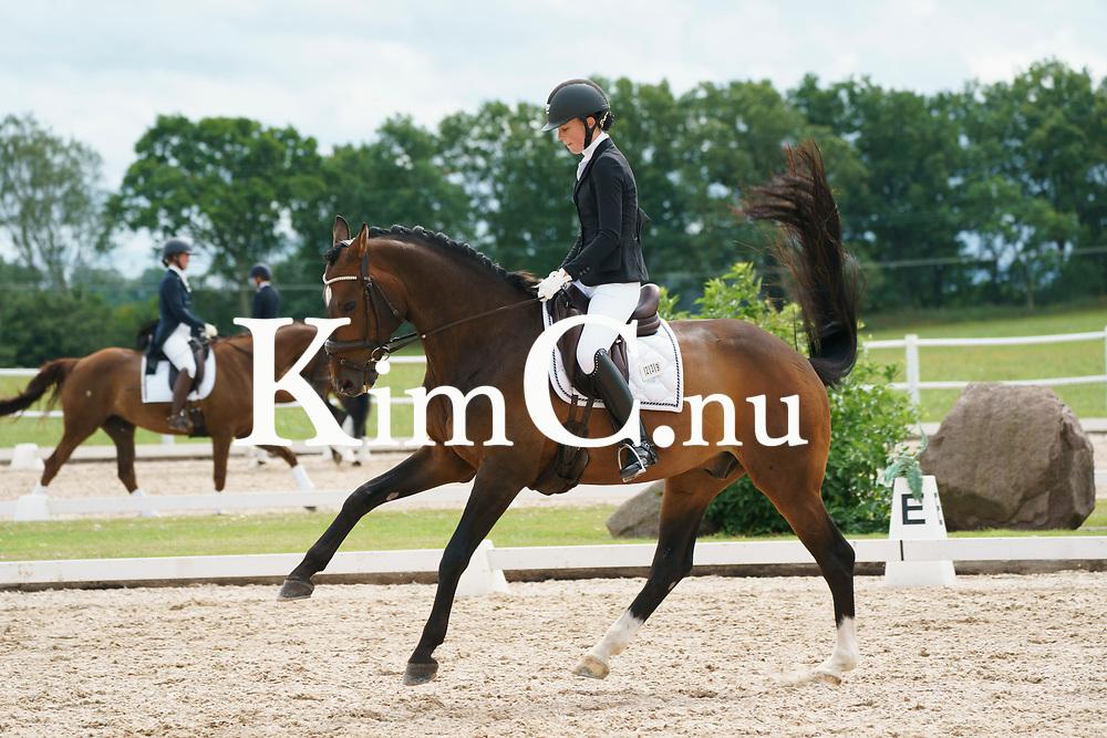 Faustino (SWB) 1244 (Figaro R– Bernstein) Siri Ehrnrooth Foto: KimC.nu by Kim C Lundin