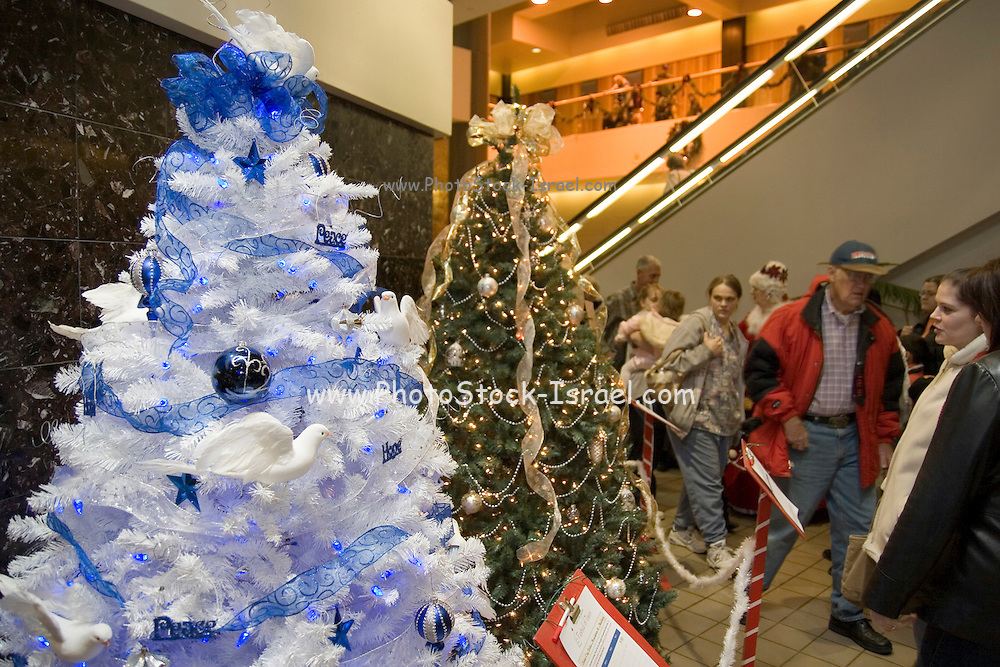 """Iowa USA, IA. Sioux City, Decorated Christmas trees at the """"Festival of Trees"""" ? A charity event in which people sell their self-decorated Christmas trees and the profits go to charity. November 2006"""