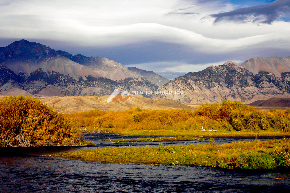 Fly fishing the Big Lost River during autumn with Mount Borah, Idaho's tallest mountain, beyond Mackay, Idaho.