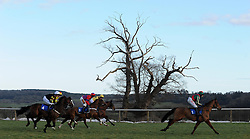 Runners make their way through the field during the South West Racing Club Handicap Hurdle (Class 5) (4YO plus)  - Photo mandatory by-line: Harry Trump/JMP - Mobile: 07966 386802 - 17/02/15 - SPORT - Equestrian - Horse Racing - Taunton Racecourse, Somerset, England.