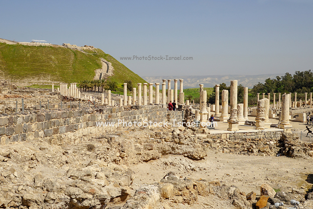 Israel, Bet Shean ancient columns found on the site,