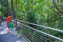 North America, United States, Washington, Bellevue, people in Bellevue Botanical Garden, Ravine Experience suspension bridge